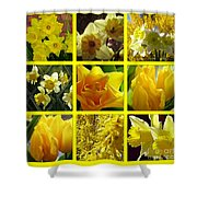 Sunshine Gold Picture Window Shower Curtain