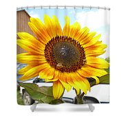 Sunshine In Country Farm Shower Curtain