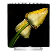 Sunshine In Your Smile Shower Curtain