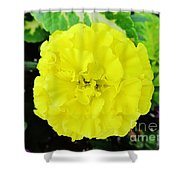 Sunshine Joy And Hope Shower Curtain