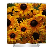 Sunshine On A Stem Shower Curtain