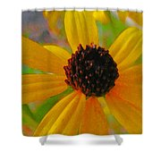 Sunshine On Susan Shower Curtain