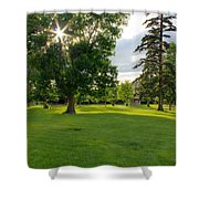Sunshine Through The Trees Shower Curtain