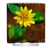 Sunshine Yellow Shower Curtain