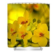Sunshine Yellow Shower Curtain