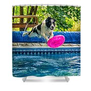 Super Dog 2 Shower Curtain