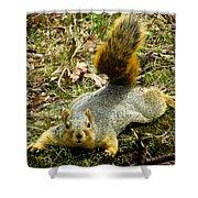 Surprise Mister Squirrel Shower Curtain