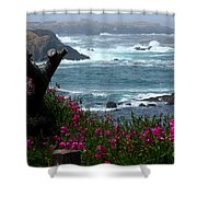 Surf And Turf Shower Curtain
