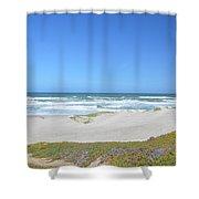Surf Beach Lompoc California 3 Shower Curtain