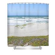 Surf Beach Lompoc California 4 Shower Curtain