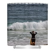 Surfer Checking The Waves Shower Curtain