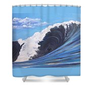 Surfer's Dream Shower Curtain