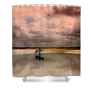 Surf Day Shower Curtain