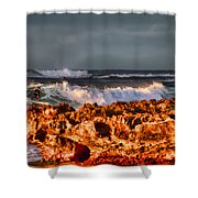 Surfing In The Usa V12 Shower Curtain
