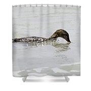 Surfing Merganser Shower Curtain