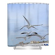 Surfing Party At Clearwater Beach Shower Curtain