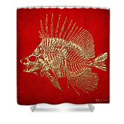 Surgeonfish Skeleton In Gold On Red  Shower Curtain