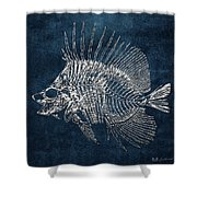 Surgeonfish Skeleton In Silver On Blue  Shower Curtain