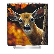 Whitetail Deer - Surprise Shower Curtain by Crista Forest