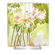 Surprise Lilies IIi A Portrait Shower Curtain