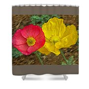 Surprised Poppies Shower Curtain