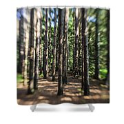 Surreal Forest Shower Curtain