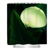 Surreal Peace Lily Shower Curtain