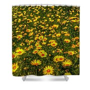 Surreal Spring Shower Curtain