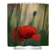 Surrealistic Red Shower Curtain