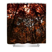 Surrounded By Autumn Shower Curtain