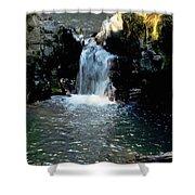 Susan Creek Falls Series 4 Shower Curtain