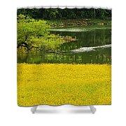 Susans Gold Pond Shower Curtain
