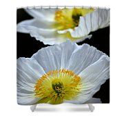 Suspended Beauty Shower Curtain