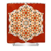 Svadhisthana Glory Shower Curtain