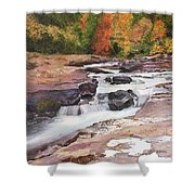 Swallow Falls Shower Curtain
