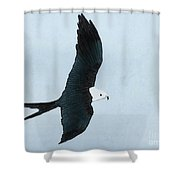 Swallow Tailed Kite Shower Curtain