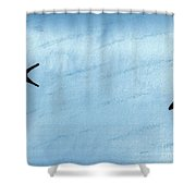 Swallow Tailed Kites Shower Curtain