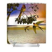 Swallows At Sunset Shower Curtain by Sandra Bauser Digital Art