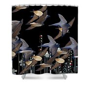 Swallows In The City Shower Curtain