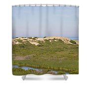 Swamp And Dunes Shower Curtain