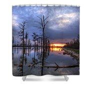 Swamp At Dusk Shower Curtain
