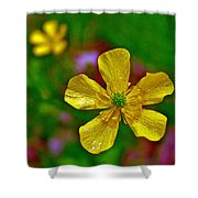 Swamp Buttercup Near Loon Lake In Sleeping Bear Dunes National Lakeshore-michigan  Shower Curtain