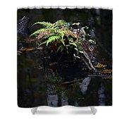 Swamp Fern Shower Curtain
