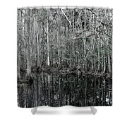 Swamp Greens Shower Curtain