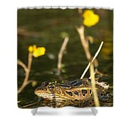 Swamp Muscian Shower Curtain