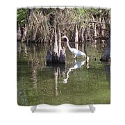 Swamp Reflections Shower Curtain