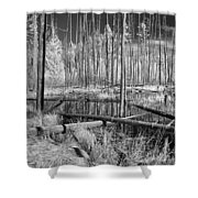 Swamp Trees Shower Curtain