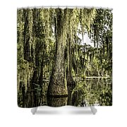 Swamp View Shower Curtain