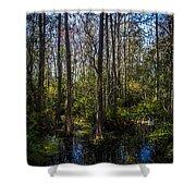Swampland Shower Curtain