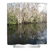 Bold Cypress Reflection Shower Curtain